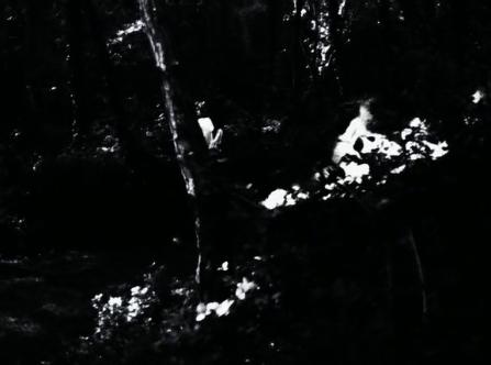 vlcsnap-2020-03-31-10h55m20s813
