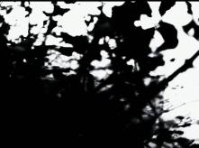 vlcsnap-2020-03-31-10h57m00s539