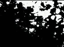 vlcsnap-2020-03-31-10h57m01s747