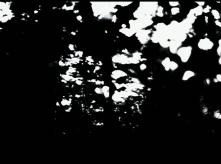 vlcsnap-2020-03-31-10h57m03s455