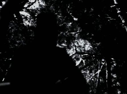 vlcsnap-2020-03-31-10h58m22s876