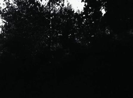 vlcsnap-2020-03-31-11h01m53s462