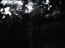 vlcsnap-2020-03-31-11h02m12s697