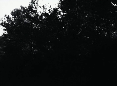 vlcsnap-2020-03-31-11h02m31s941