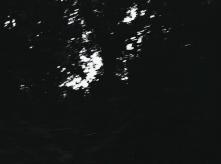 vlcsnap-2020-03-31-11h02m37s094