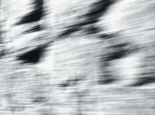 vlcsnap-2020-03-31-11h02m54s135