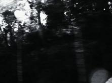vlcsnap-2020-03-31-11h02m59s857