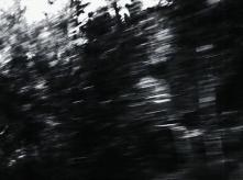 vlcsnap-2020-03-31-11h03m06s405