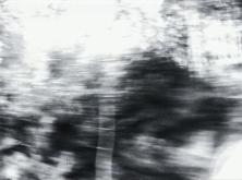 vlcsnap-2020-03-31-11h03m13s364