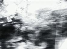 vlcsnap-2020-03-31-11h03m15s492
