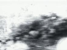 vlcsnap-2020-03-31-11h03m17s621
