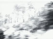 vlcsnap-2020-03-31-11h03m19s910