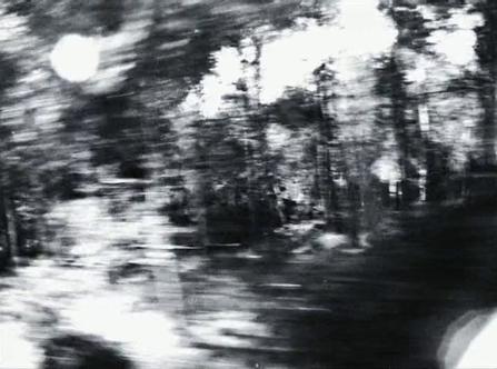 vlcsnap-2020-03-31-11h03m24s673