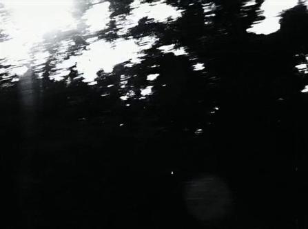 vlcsnap-2020-03-31-11h03m34s823