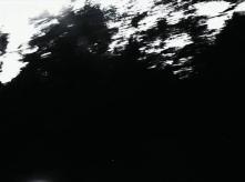 vlcsnap-2020-03-31-11h03m44s631