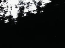 vlcsnap-2020-03-31-11h03m58s353