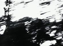vlcsnap-2020-03-31-11h05m28s707