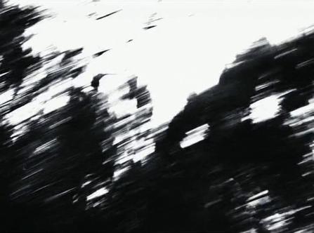 vlcsnap-2020-03-31-11h05m45s096